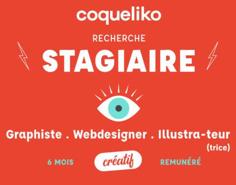 Coqueliko- Recherche stagiaire 6 mois