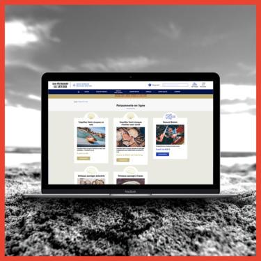site-e-commerce-Pecherie-le-levier-Agence-web-Lannion-Coqueliko